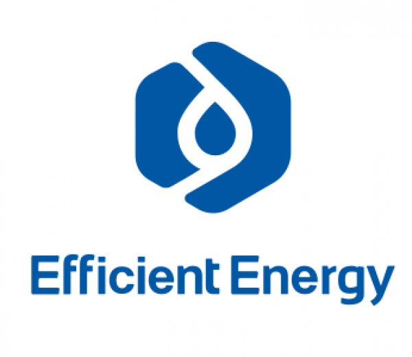 Efficient Energy